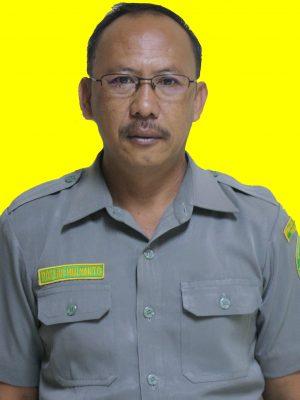 Roseno Mulyanto